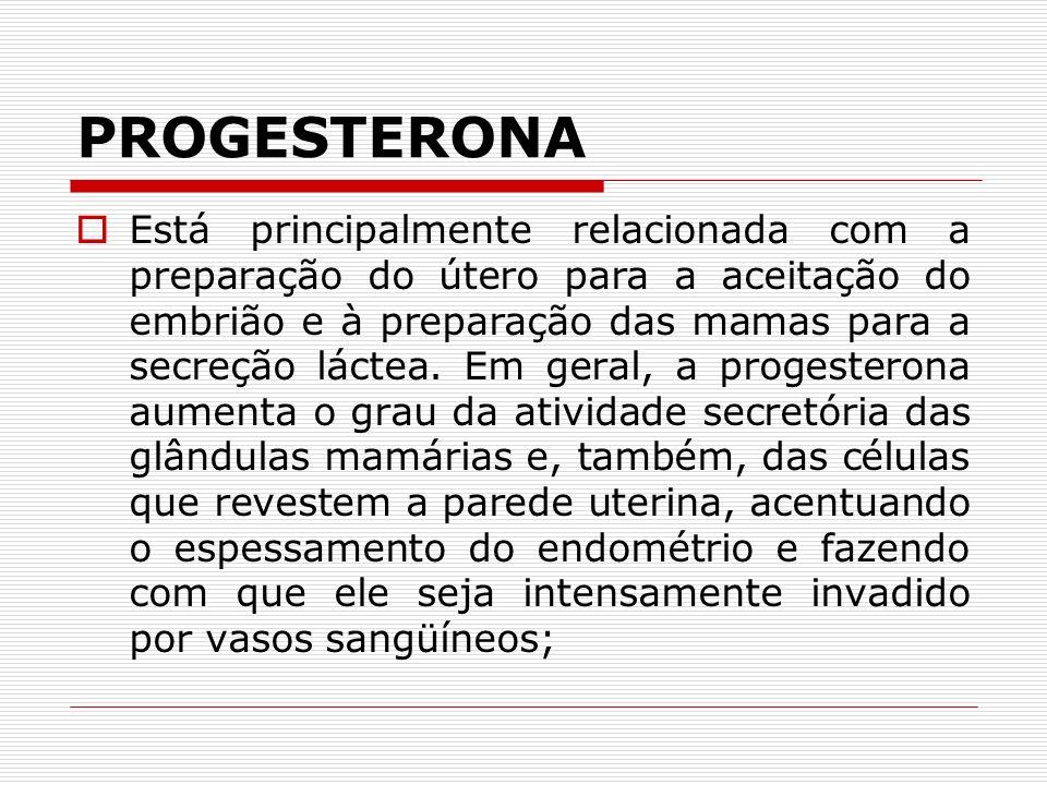 PROGESTERONA Está principalmente relacionada com a preparação do útero para a aceitação do embrião e à preparação das mamas para a secreção láctea.