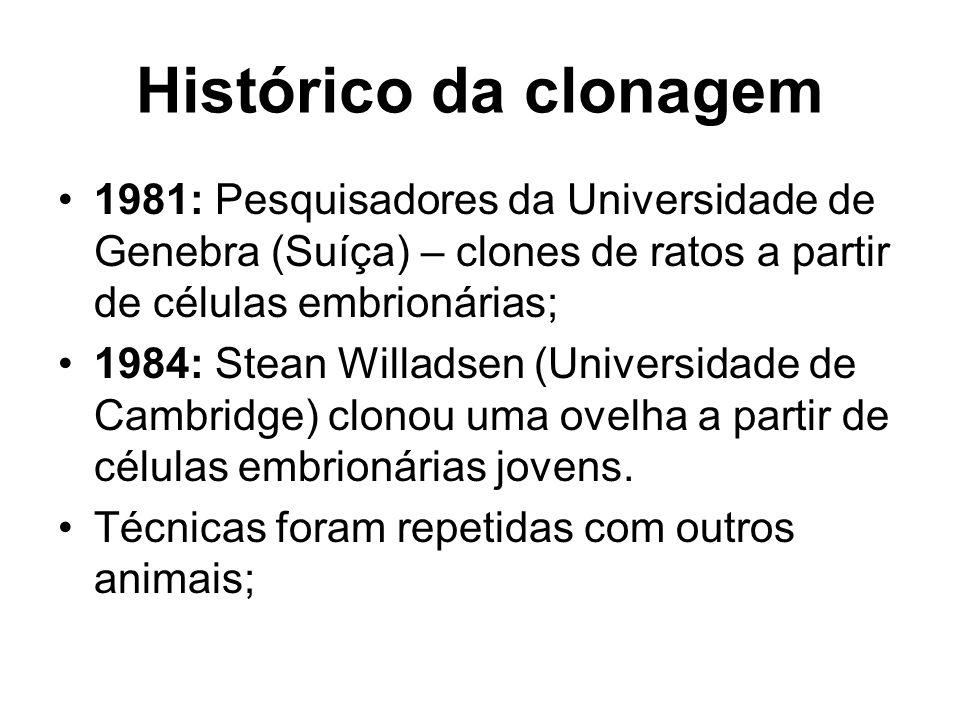 Histórico da clonagem 1981: Pesquisadores da Universidade de Genebra (Suíça) – clones de ratos a partir de células embrionárias; 1984: Stean Willadsen