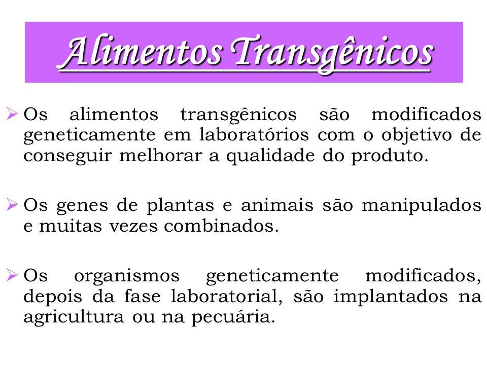 Os alimentos transgênicos são modificados geneticamente em laboratórios com o objetivo de conseguir melhorar a qualidade do produto. Os genes de plant