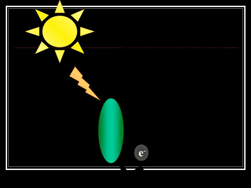 Fosforilação Uma série de reações químicas desencadeadas pela ação luminosa que resulta na produção de ATP.