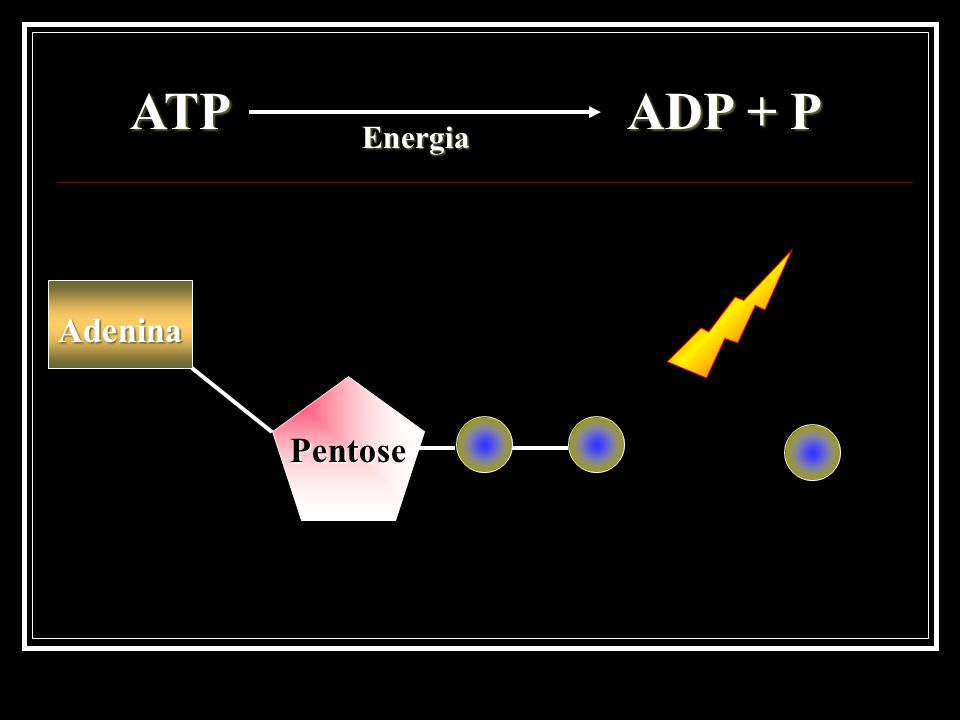 RENDIMENTO ENERGÉTICO DA RESPIRAÇÃO AERÓBIA ETAPARENDIMENTO GLICÓLISE CICLO DE KREBS ENTRAR NA MITOCÔNDRIA FOSFORILAÇÃO OXIDATIVA TOTAL + 2 ATP - 2 ATP + 34 ATP 36 a 38 ATP