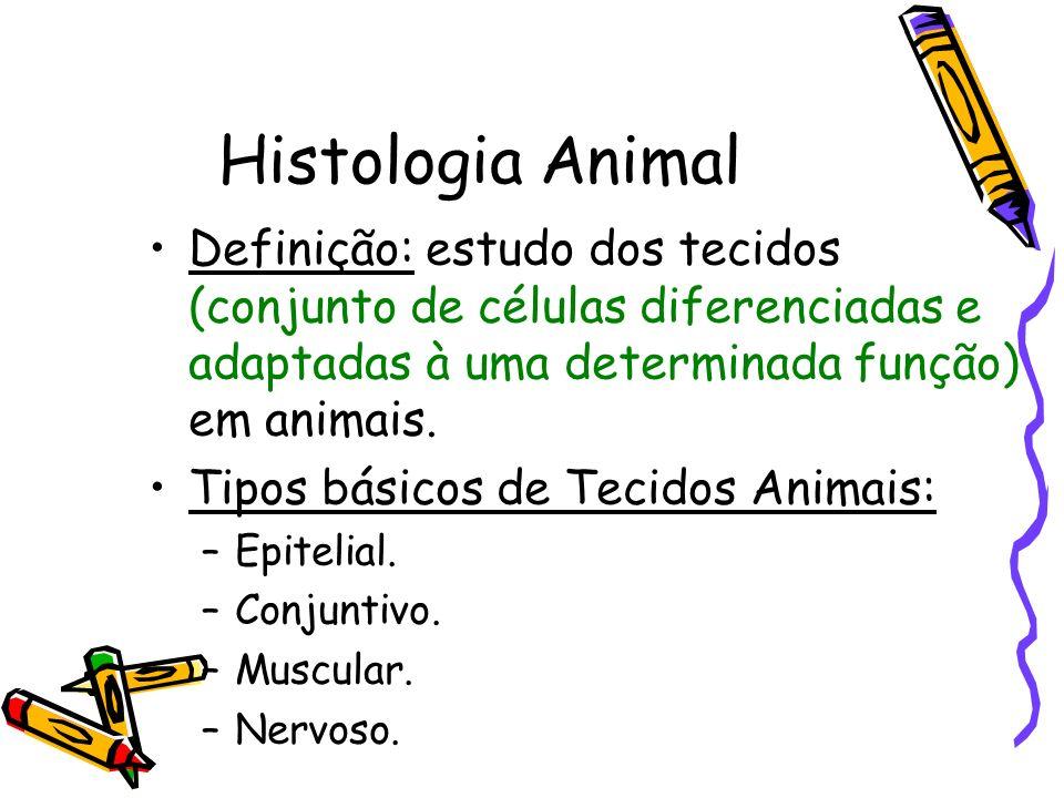 Histologia Animal Definição: estudo dos tecidos (conjunto de células diferenciadas e adaptadas à uma determinada função) em animais. Tipos básicos de