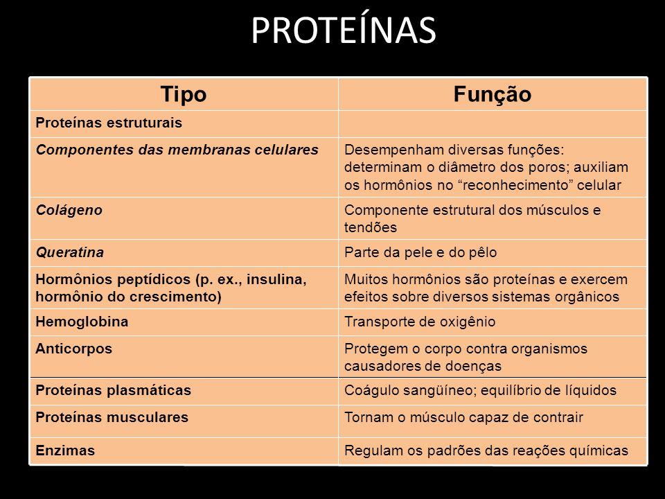 PROTEÍNAS TipoFunção Proteínas estruturais Componentes das membranas celularesDesempenham diversas funções: determinam o diâmetro dos poros; auxiliam os hormônios no reconhecimento celular ColágenoComponente estrutural dos músculos e tendões QueratinaParte da pele e do pêlo Hormônios peptídicos (p.
