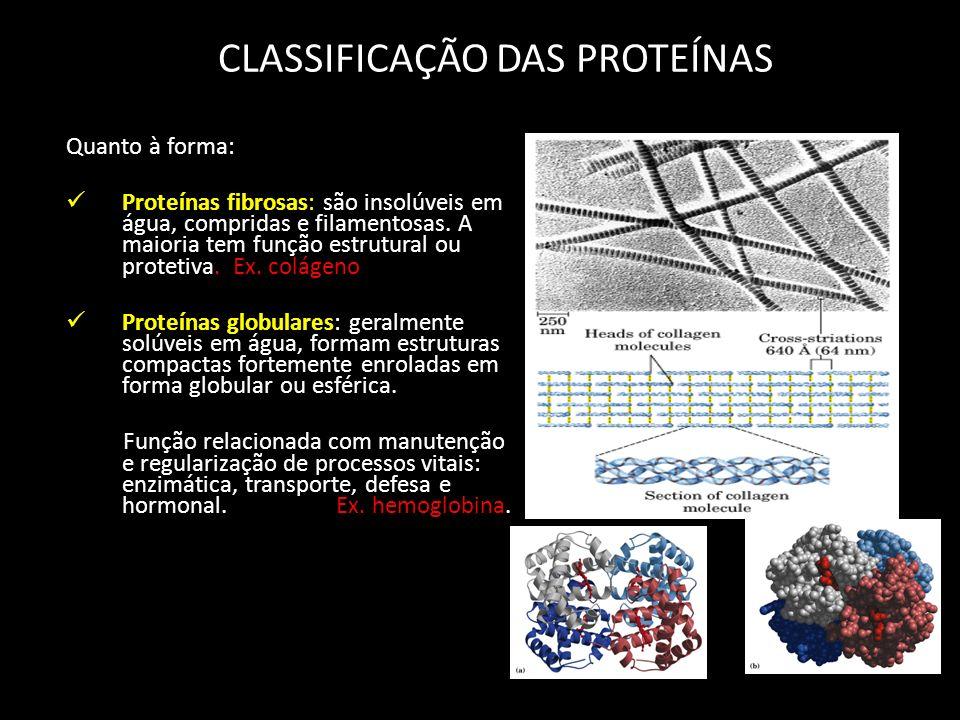 CLASSIFICAÇÃO DAS PROTEÍNAS Quanto à forma: Proteínas fibrosas: são insolúveis em água, compridas e filamentosas. A maioria tem função estrutural ou p