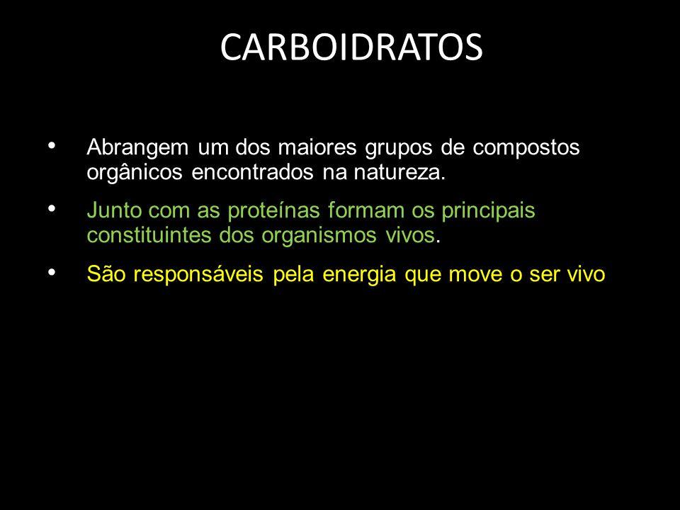 CARBOIDRATOS Abrangem um dos maiores grupos de compostos orgânicos encontrados na natureza. Junto com as proteínas formam os principais constituintes