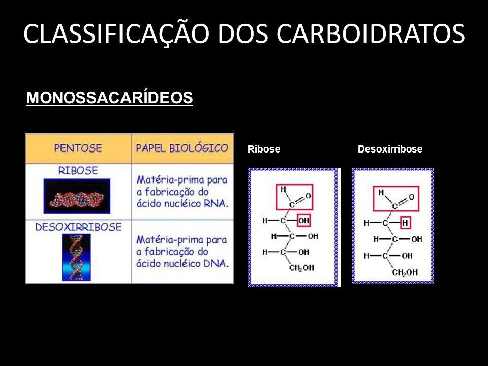 CLASSIFICAÇÃO DOS CARBOIDRATOS MONOSSACARÍDEOS Ribose Desoxirribose