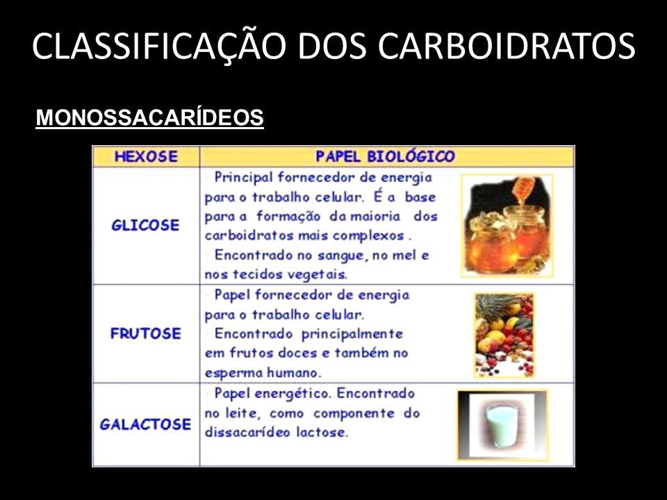 CLASSIFICAÇÃO DOS CARBOIDRATOS MONOSSACARÍDEOS
