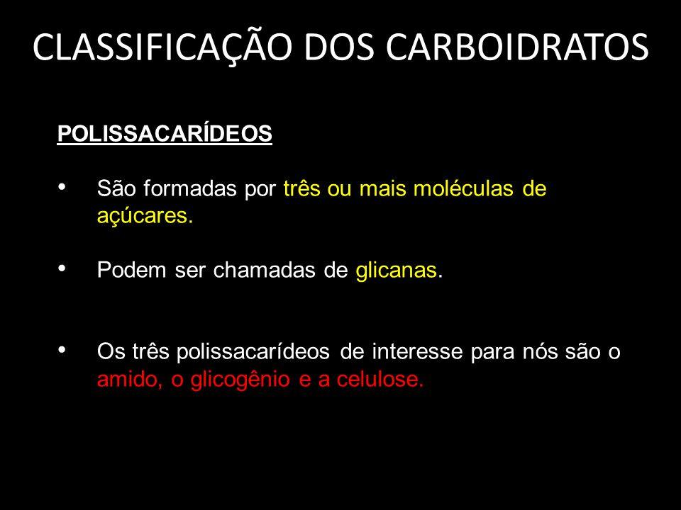 CLASSIFICAÇÃO DOS CARBOIDRATOS POLISSACARÍDEOS São formadas por três ou mais moléculas de açúcares. Podem ser chamadas de glicanas. Os três polissacar