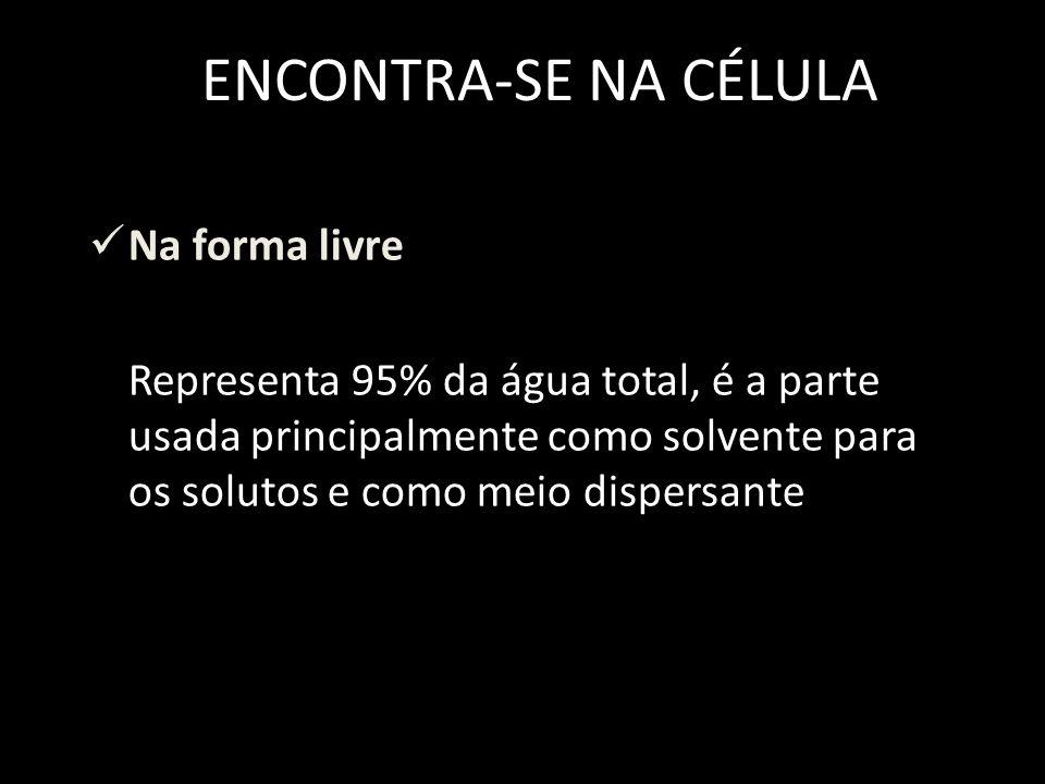 ENCONTRA-SE NA CÉLULA Na forma livre Representa 95% da água total, é a parte usada principalmente como solvente para os solutos e como meio dispersante