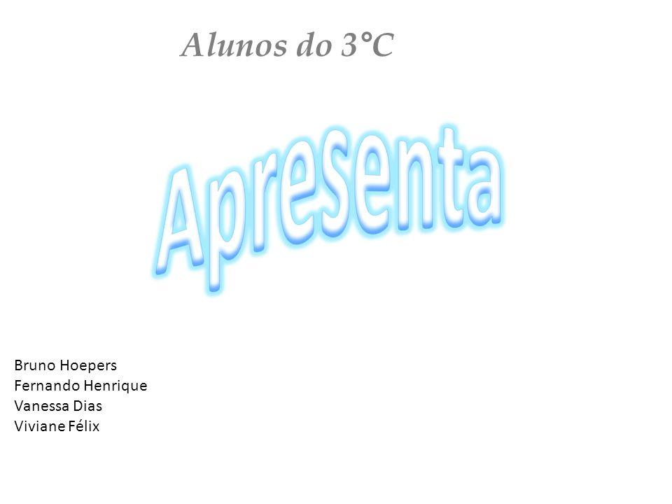 Alunos do 3°C Bruno Hoepers Fernando Henrique Vanessa Dias Viviane Félix