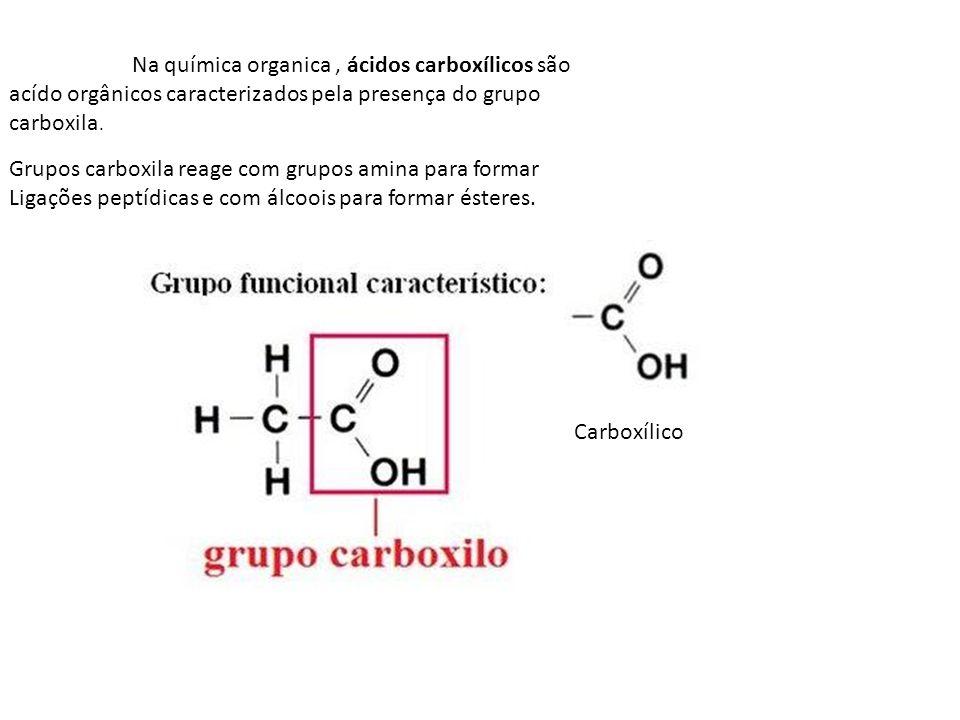 Na química organica, ácidos carboxílicos são acído orgânicos caracterizados pela presença do grupo carboxila. Grupos carboxila reage com grupos amina