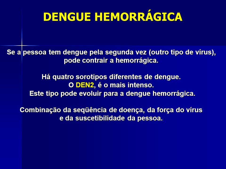 DESENVOLVIMENTO DA DOENÇA O mosquito infectado pica o homem. O vírus se dissemina pelo sangue. Um dos locais preferidos do vírus para se instalar no c