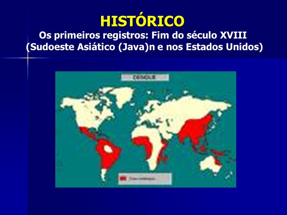 CAUSADOR Vírus Flaviviridae