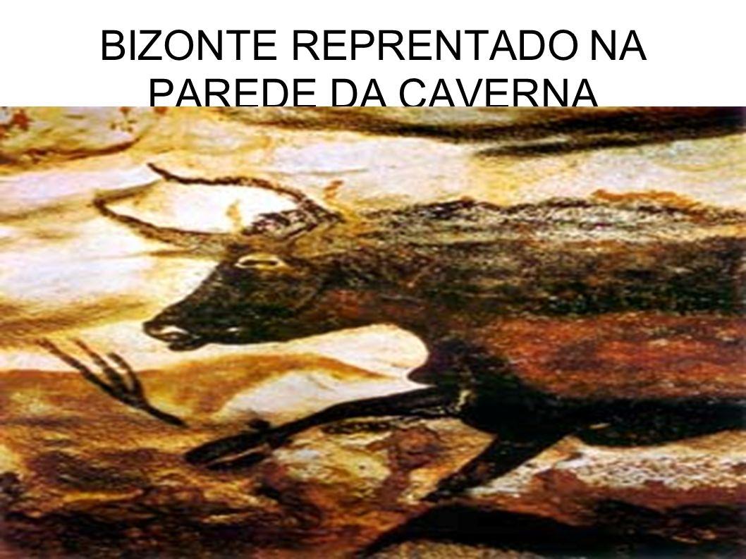 BIZONTE REPRENTADO NA PAREDE DA CAVERNA