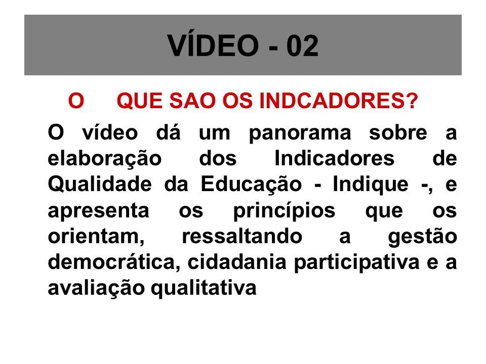 VÍDEO - 02 O QUE SAO OS INDCADORES.