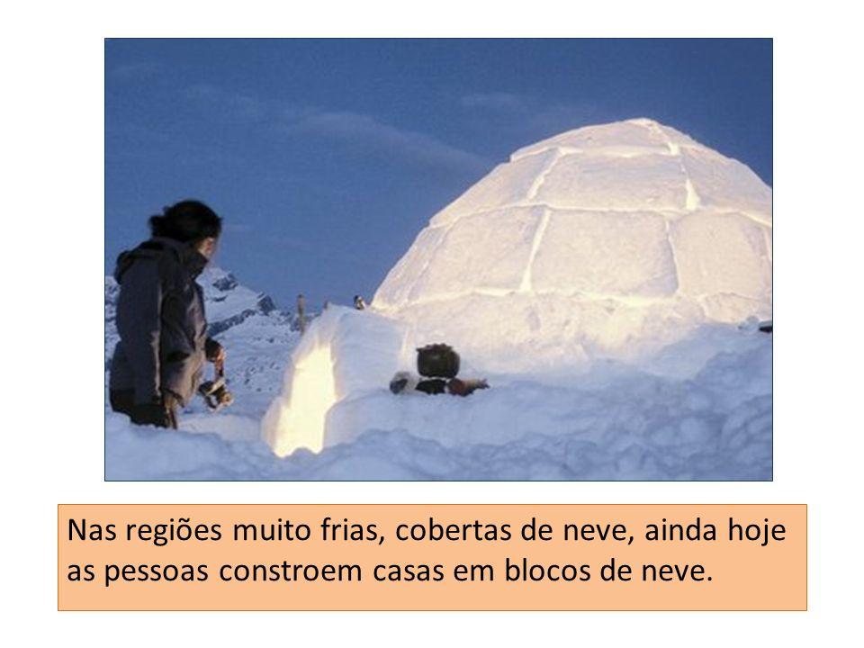 Nas regiões muito frias, cobertas de neve, ainda hoje as pessoas constroem casas em blocos de neve.