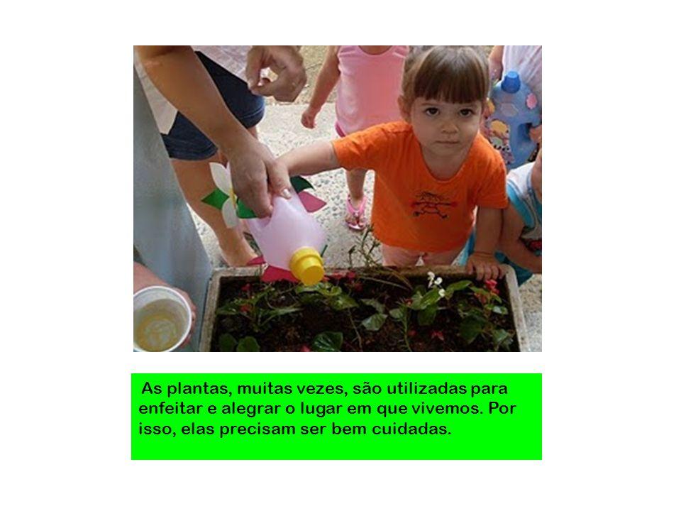 As plantas, muitas vezes, são utilizadas para enfeitar e alegrar o lugar em que vivemos. Por isso, elas precisam ser bem cuidadas.