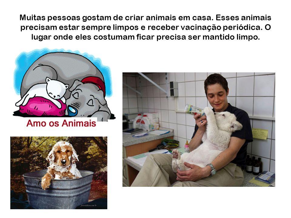 Muitas pessoas gostam de criar animais em casa. Esses animais precisam estar sempre limpos e receber vacinação periódica. O lugar onde eles costumam f