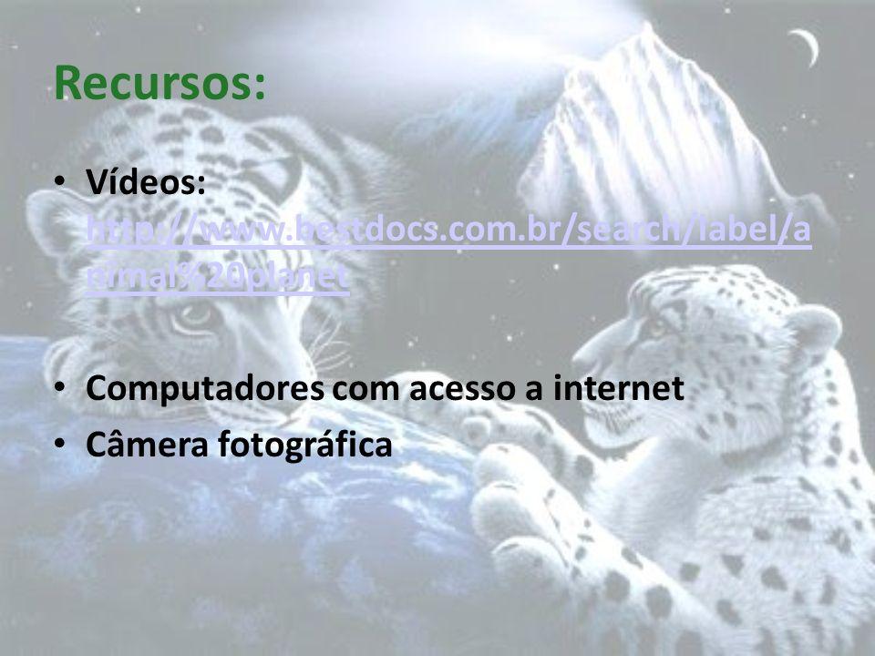 Recursos: Vídeos: http://www.bestdocs.com.br/search/label/a nimal%20planet http://www.bestdocs.com.br/search/label/a nimal%20planet Computadores com a