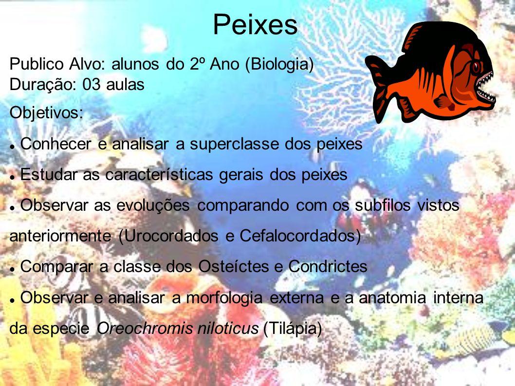 Peixes Publico Alvo: alunos do 2º Ano (Biologia) Duração: 03 aulas Objetivos: Conhecer e analisar a superclasse dos peixes Estudar as características