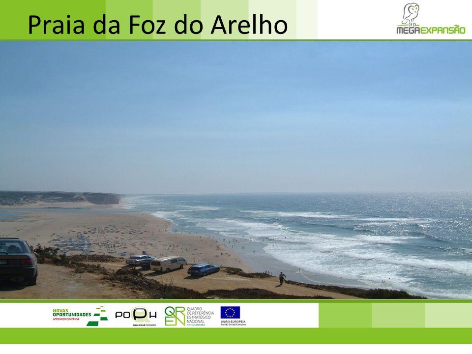 Pontal da Carrapateira Localizado no concelho algarvio de Aljezur, abrange a faixa costeira de elevada importância ecológica, e rara beleza natural entre as praias da Bordeira e Amado, com falésias altas e recortadas entrando pelo mar.