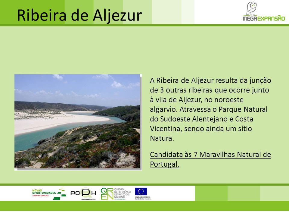 Ribeira de Aljezur A Ribeira de Aljezur resulta da junção de 3 outras ribeiras que ocorre junto à vila de Aljezur, no noroeste algarvio. Atravessa o P