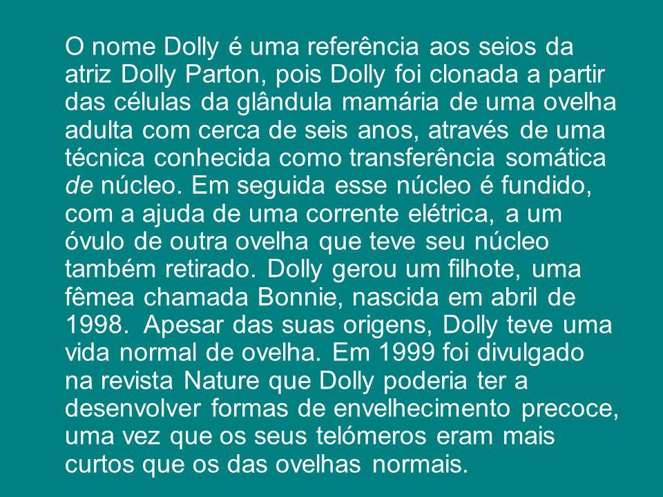 O nome Dolly é uma referência aos seios da atriz Dolly Parton, pois Dolly foi clonada a partir das células da glândula mamária de uma ovelha adulta co