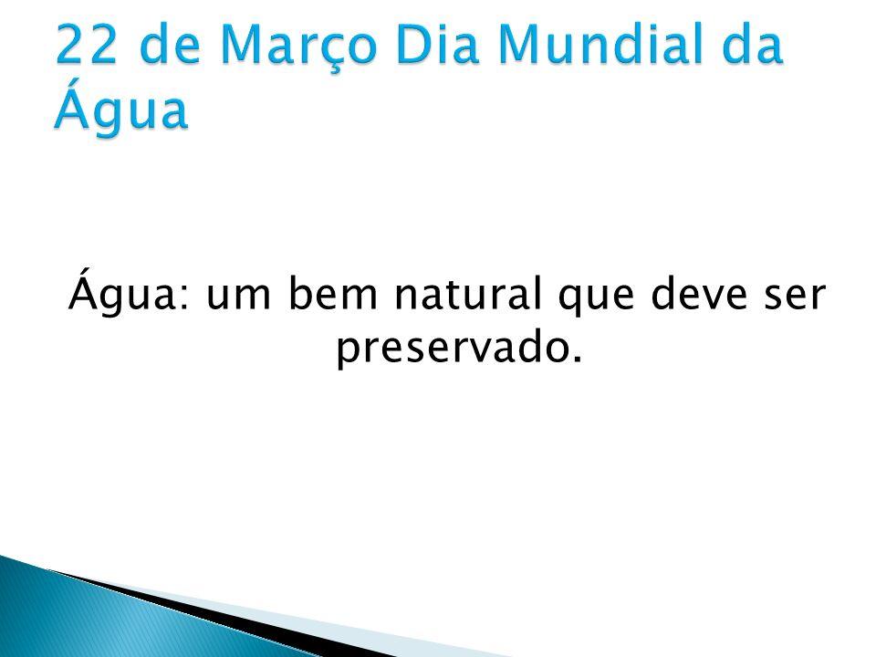 Água: um bem natural que deve ser preservado.