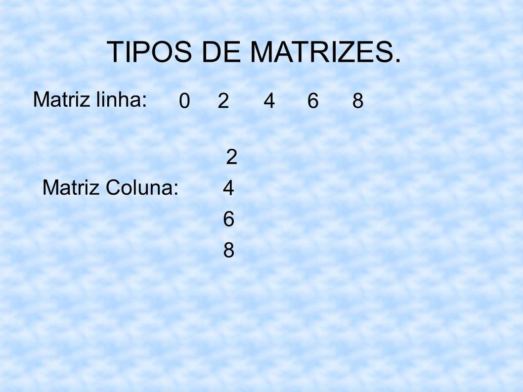 TIPOS DE MATRIZES. Matriz linha: 02468 Matriz Coluna: 2 4 6 8