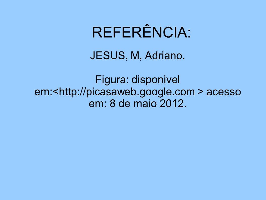 REFERÊNCIA: JESUS JESUS. M. Adriano JESUS, M, Adriano. Figura: disponivel em: acesso em: 8 de maio 2012.