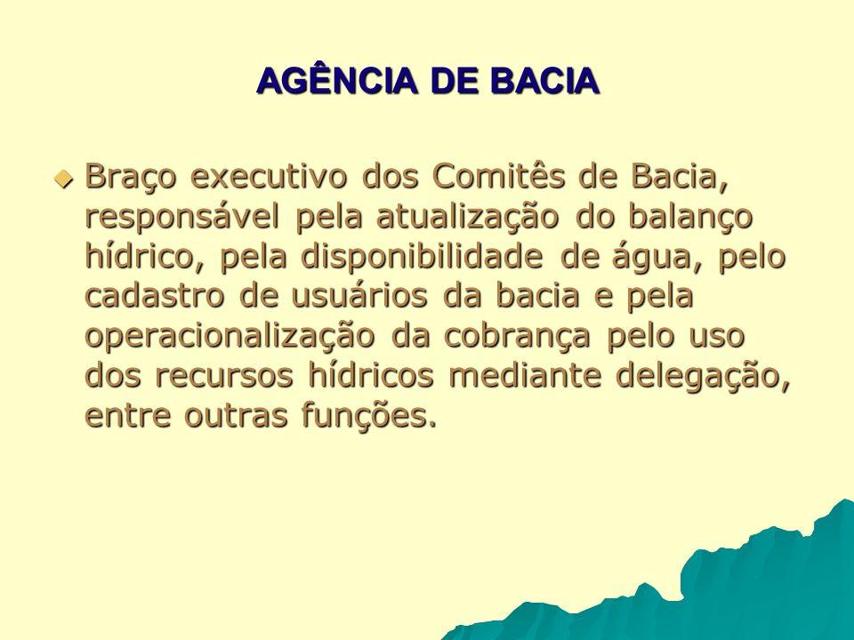 AGÊNCIA DE BACIA Braço executivo dos Comitês de Bacia, responsável pela atualização do balanço hídrico, pela disponibilidade de água, pelo cadastro de