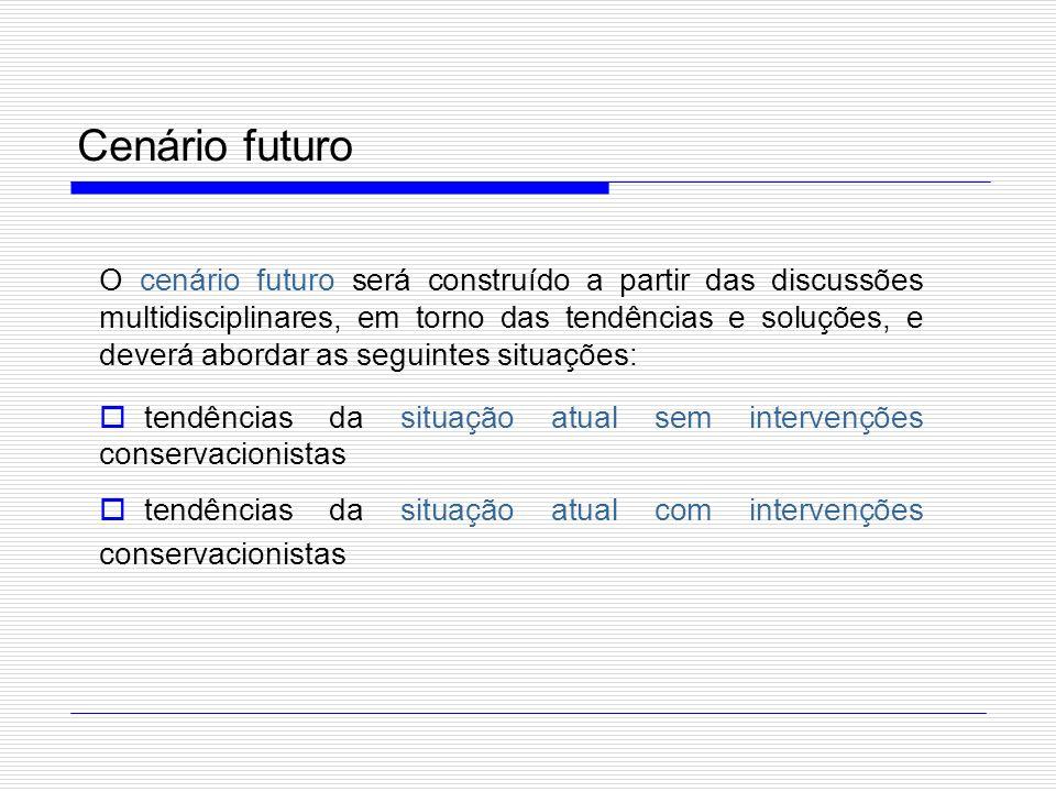 Cenário futuro O cenário futuro será construído a partir das discussões multidisciplinares, em torno das tendências e soluções, e deverá abordar as se