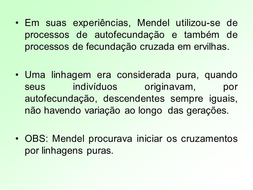 Em suas experiências, Mendel utilizou-se de processos de autofecundação e também de processos de fecundação cruzada em ervilhas. Uma linhagem era cons