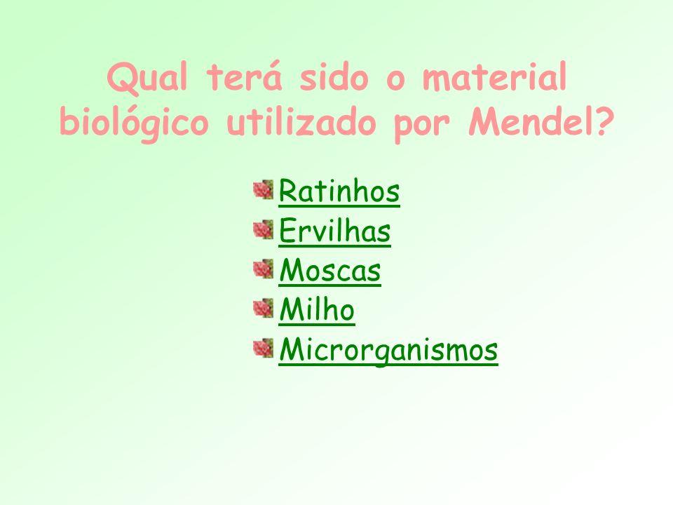 Qual terá sido o material biológico utilizado por Mendel? Ratinhos Ervilhas Moscas Milho Microrganismos