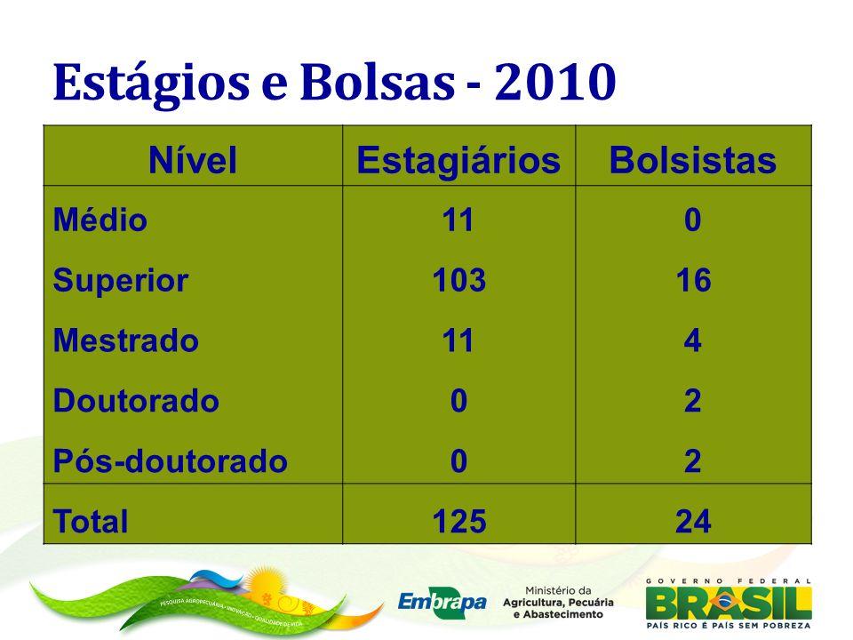 Estágios e Bolsas - 2010 NívelEstagiáriosBolsistas Médio110 Superior10316 Mestrado114 Doutorado02 Pós-doutorado02 Total12524
