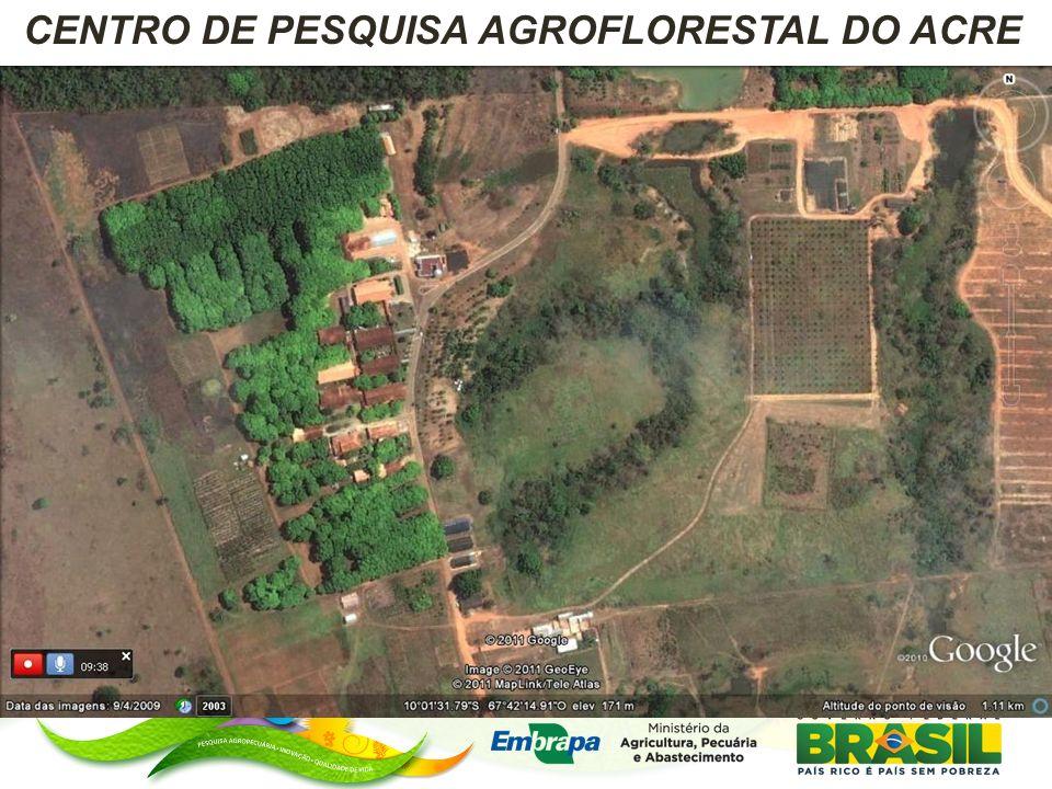 Grupo de floresta Grupo de pecuária Grupo de fruticultura Grupo SIAD Localização de Ações de P&D da Embrapa Acre em Propriedades Particulares, Projetos de Assentamento e Reservas Extrativistas