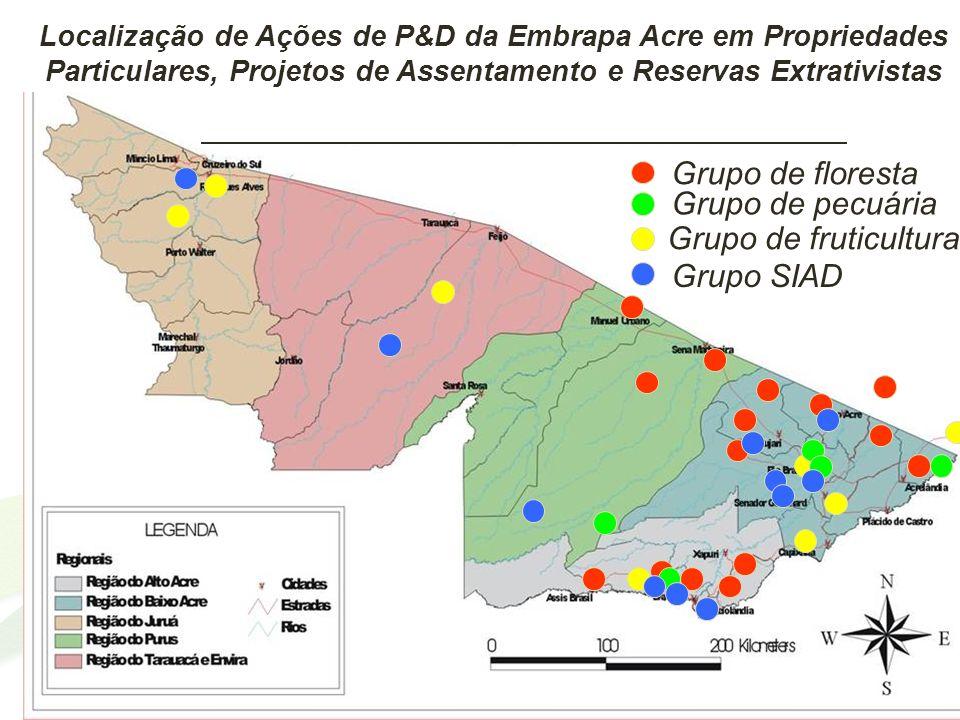 Grupo de floresta Grupo de pecuária Grupo de fruticultura Grupo SIAD Localização de Ações de P&D da Embrapa Acre em Propriedades Particulares, Projeto
