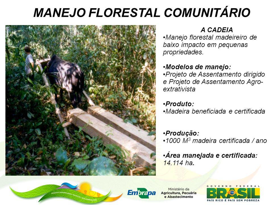 MANEJO FLORESTAL COMUNITÁRIO A CADEIA Manejo florestal madeireiro de baixo impacto em pequenas propriedades. Modelos de manejo: Projeto de Assentament