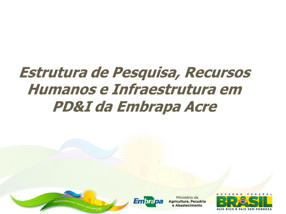 Estrutura de Pesquisa, Recursos Humanos e Infraestrutura em PD&I da Embrapa Acre