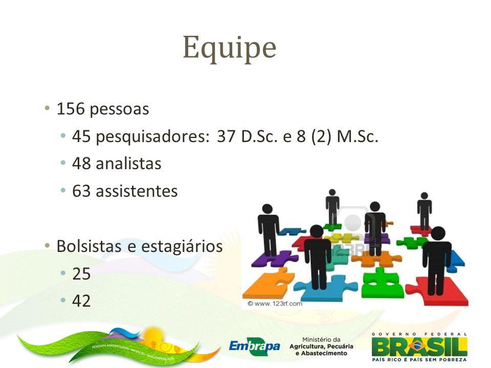 Equipe 156 pessoas 45 pesquisadores: 37 D.Sc. e 8 (2) M.Sc. 48 analistas 63 assistentes Bolsistas e estagiários 25 42