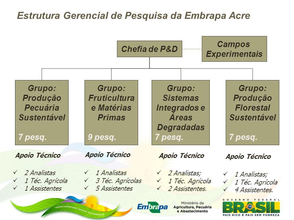 Chefia de P&D Grupo: Produção Pecuária Sustentável 7 pesq. Grupo: Fruticultura e Matérias Primas 9 pesq. Grupo: Sistemas Integrados e Áreas Degradadas