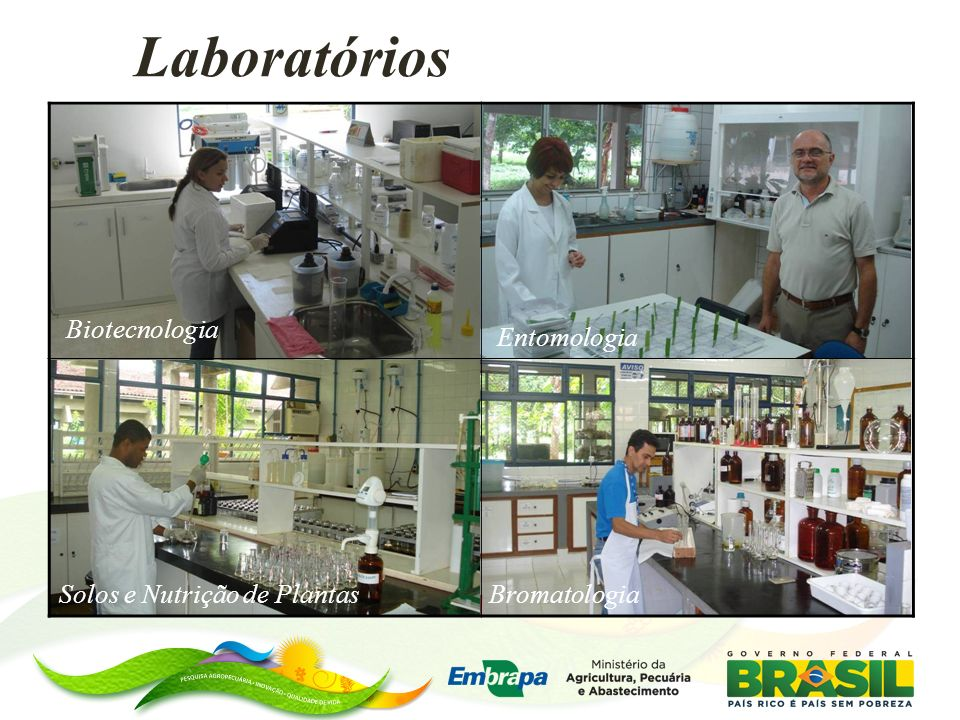 Lab.de Bromatologia 4 assistentes Lab. de entomologia; 1 analista 2 assistentes (-1) Lab.