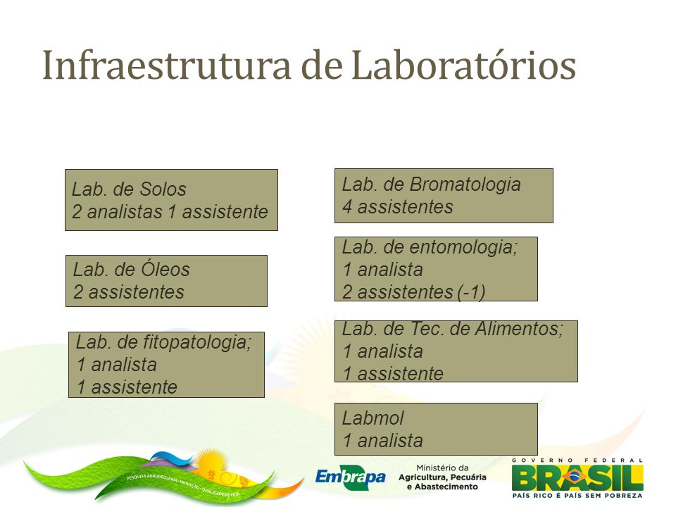 Lab. de Bromatologia 4 assistentes Lab. de entomologia; 1 analista 2 assistentes (-1) Lab. de fitopatologia; 1 analista 1 assistente Lab. de Solos 2 a