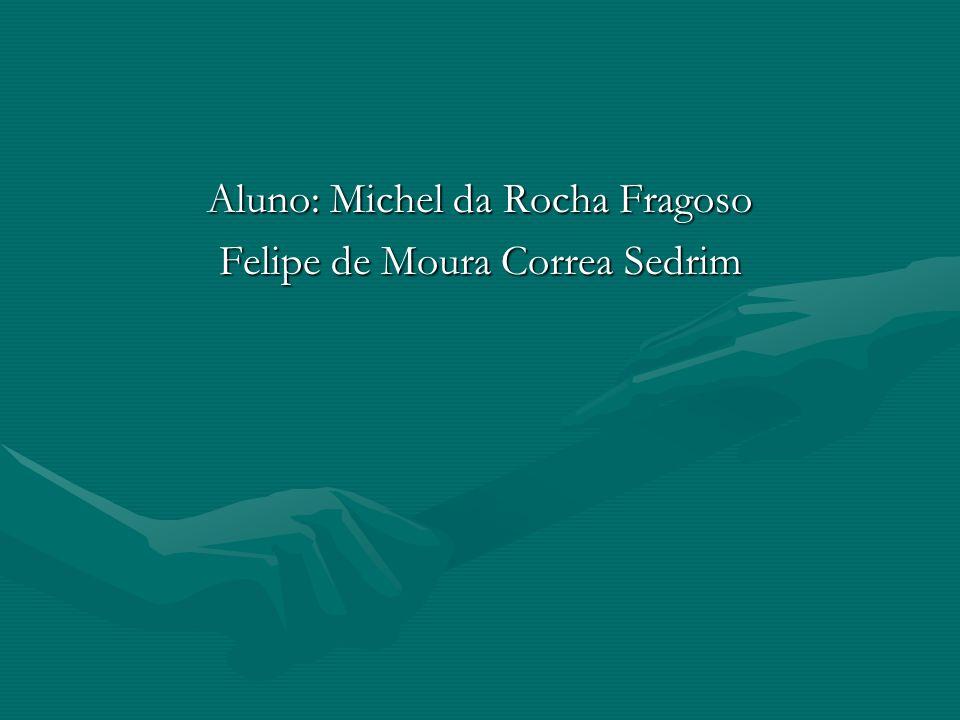 Aluno: Michel da Rocha Fragoso Felipe de Moura Correa Sedrim