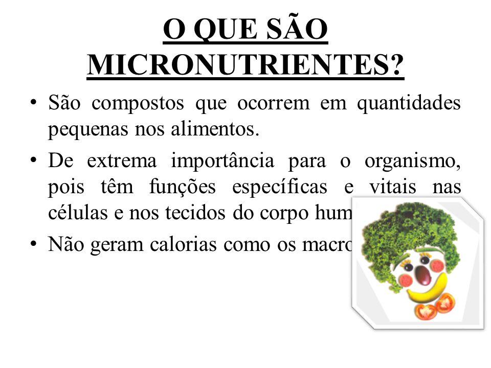 ÁGUA Essencial à vida, embora também não seja fornecedora de calorias, é o componente fundamental do nosso organismo, ocupando dois terços dele.