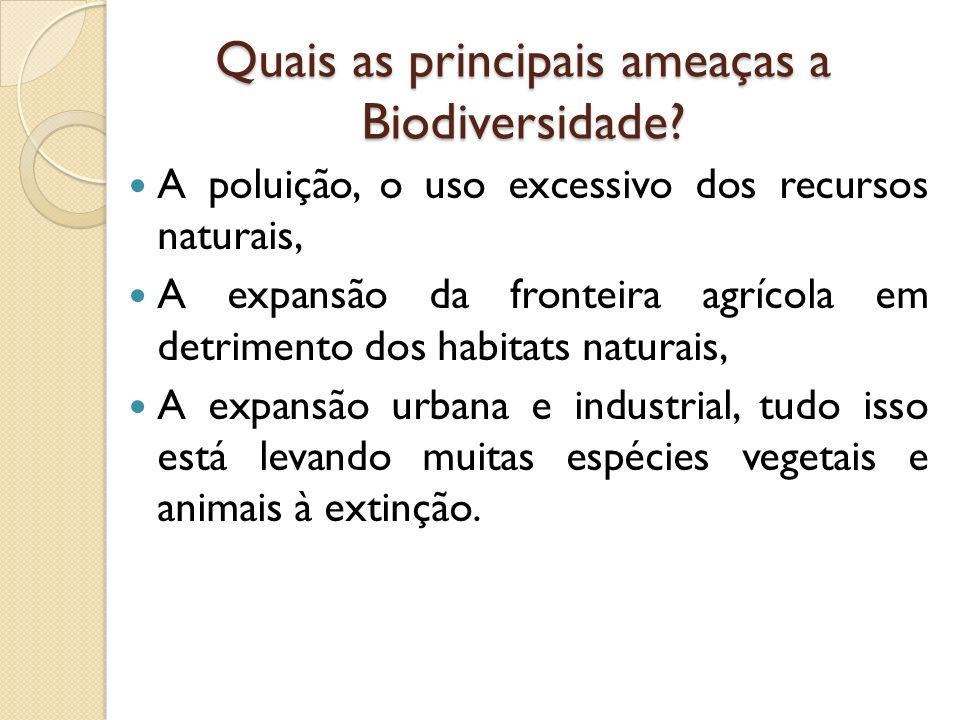 Quais as principais ameaças a Biodiversidade.