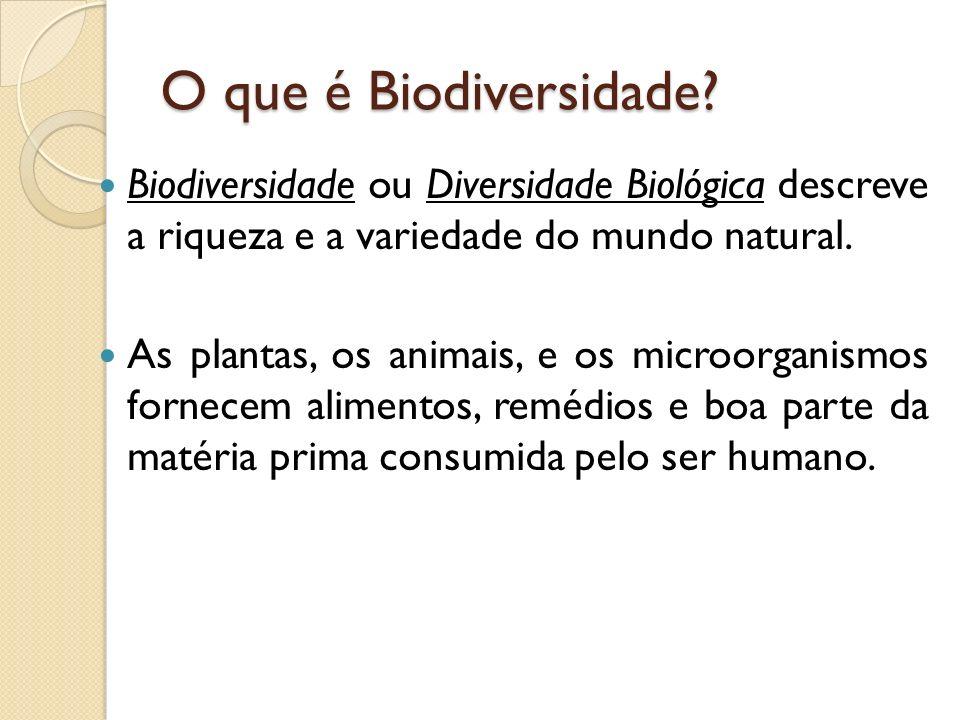 Onde a biodiversidade está presente.