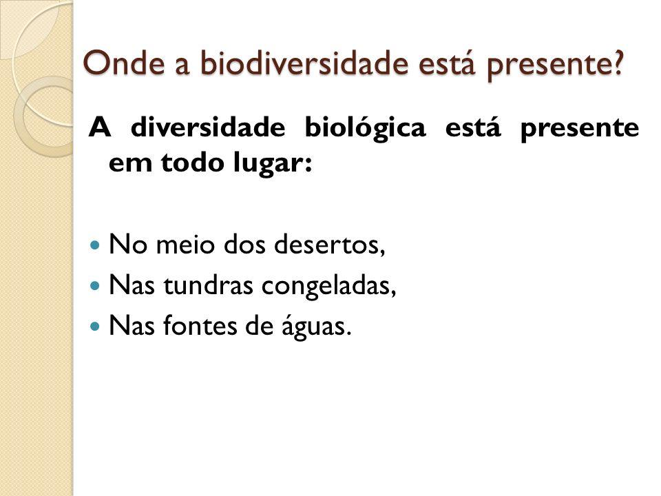 Introdução de Espécies A introdução de espécies animais e vegetais em diferentes ecossistemas também pode ser prejudicial, pois acabam colocando em risco a biodiversidade de toda uma área, região ou país.