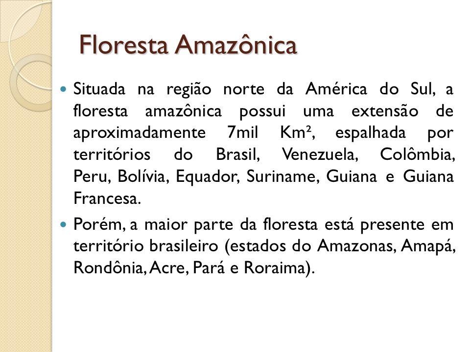 Floresta Amazônica Situada na região norte da América do Sul, a floresta amazônica possui uma extensão de aproximadamente 7mil Km², espalhada por territórios do Brasil, Venezuela, Colômbia, Peru, Bolívia, Equador, Suriname, Guiana e Guiana Francesa.