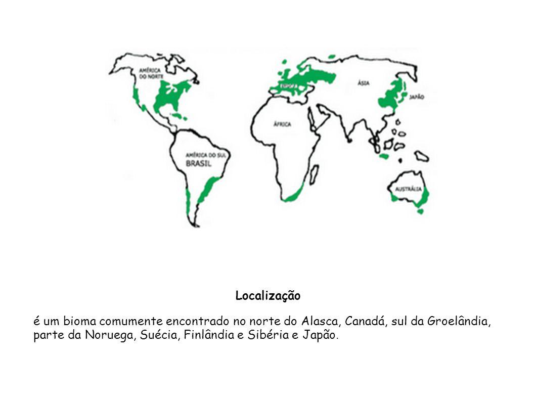 é um bioma comumente encontrado no norte do Alasca, Canadá, sul da Groelândia, parte da Noruega, Suécia, Finlândia e Sibéria e Japão. Localização
